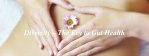 Diversity – The Key to Gut Health // andreadahlman.com