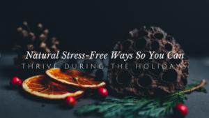6 Ways to Thrive through the Holidays | andreadahlman.com