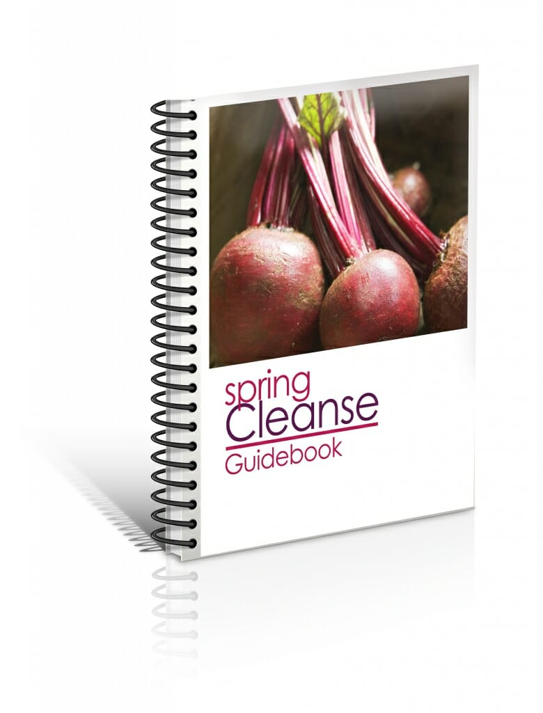 SpringCleanseGuidebook 3Dcover Nofooter